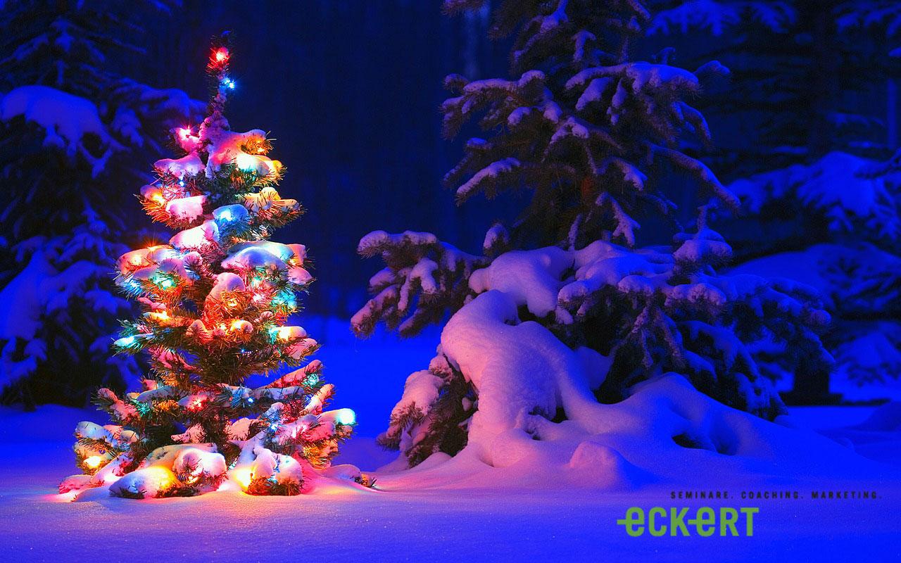 Es weihnachtet! – Die Top 5 Weihnachtsmärkte der Schweiz