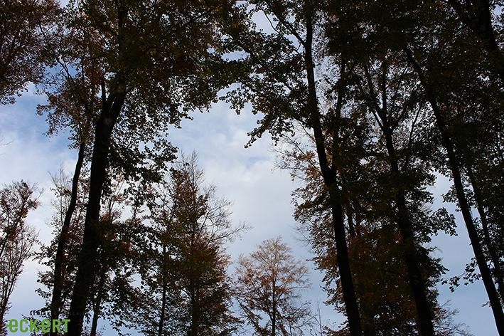 Tipps fürs Outdoor-Weekend (1/2)